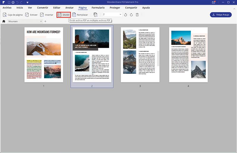 modificar las paginas pdf