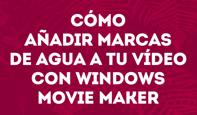 Cómo añadir una marca de agua a tu vídeo con <br />Windows Movie Maker