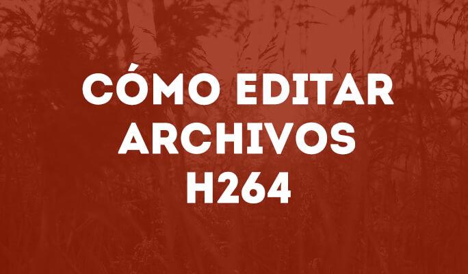 Cómo editar archivos H264