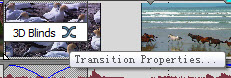 Transition Properties