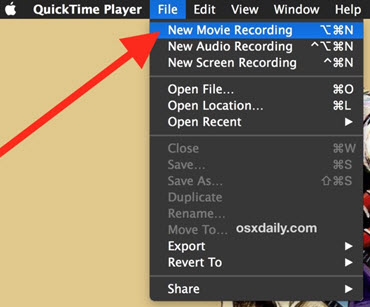 quicktime-to-record-4